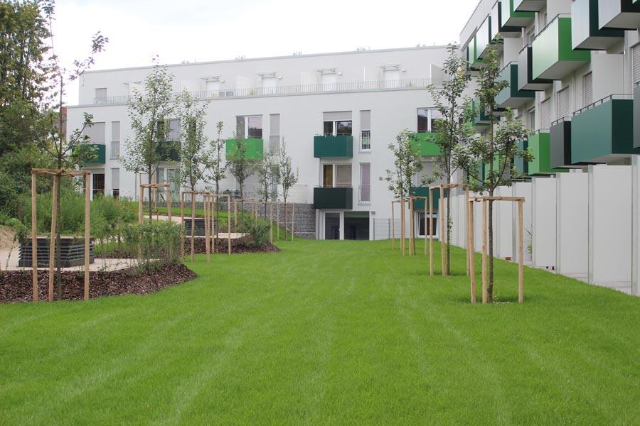 Grünanlage, umgesetzt von Garten- und Landschaftsbau Wurm